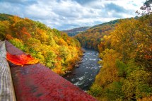 In Fall Laurel Highlands Pa