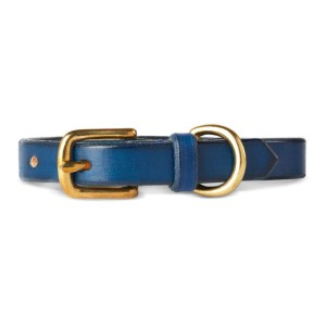 Maximum Henry Blue Leather Collar