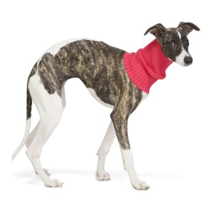giu giu Pink Nonna Animal Turtleneck Collar