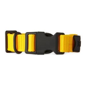 RAINS Yellow Webbing Collar