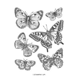 BUTTERFLY BRILLIANCE CLING STAMP SET