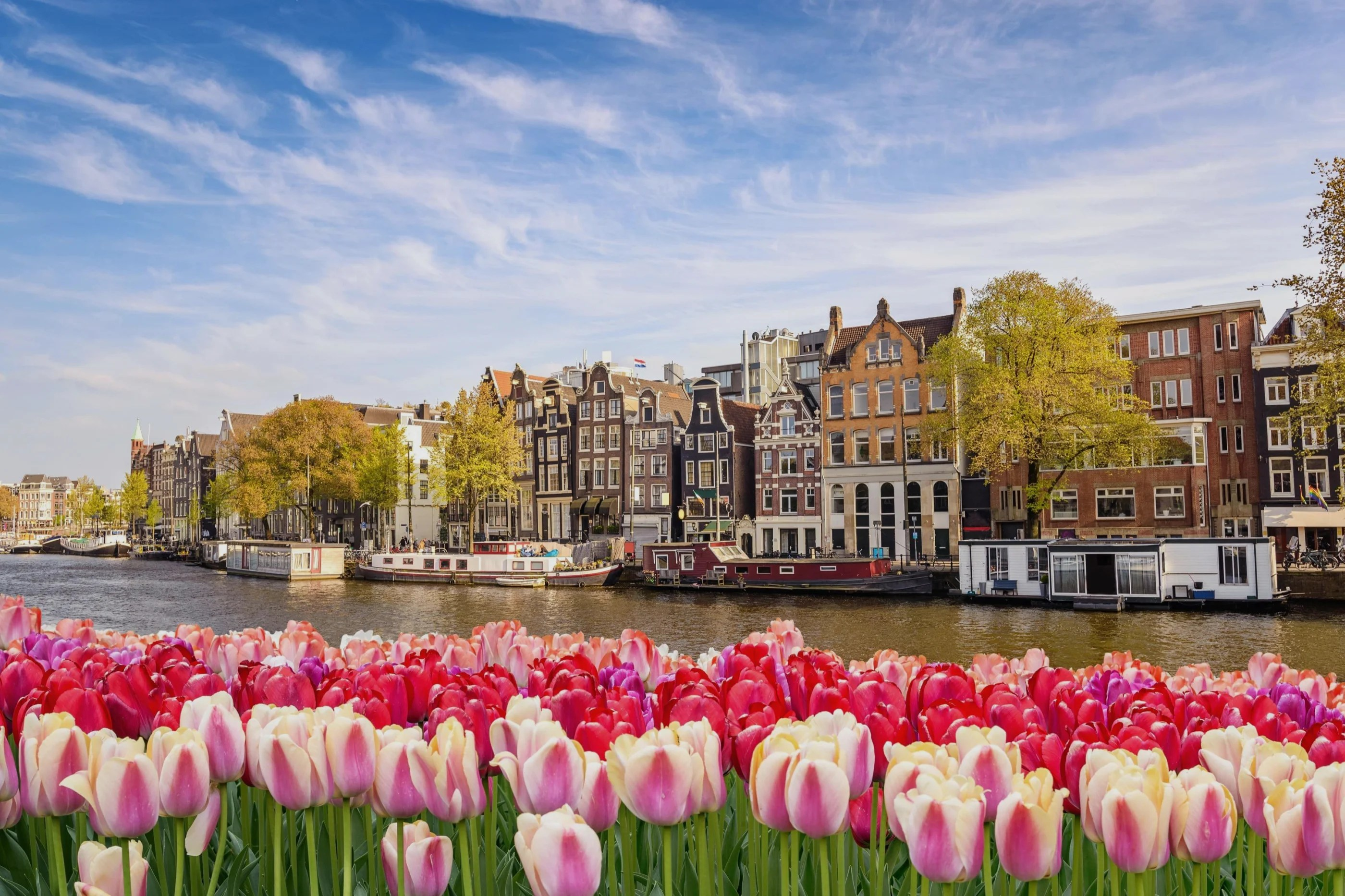 Top 20 Apartments Condos In Netherlands Staylist