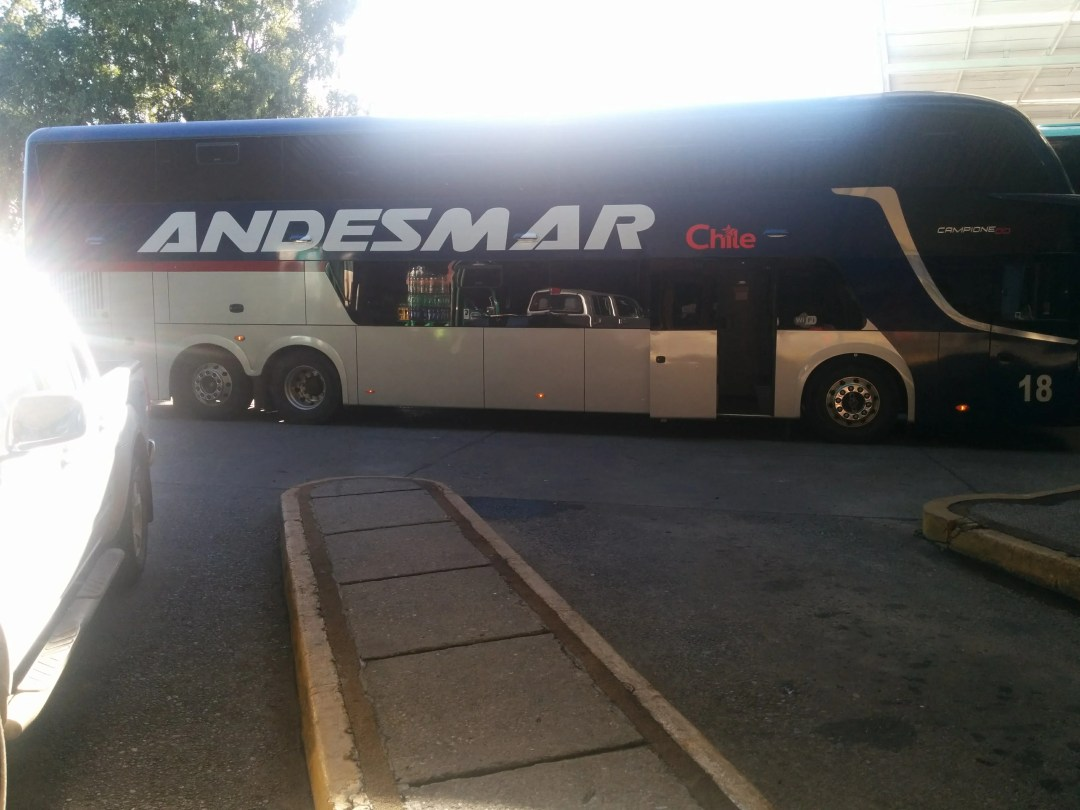 Overnight bus to Valdivia
