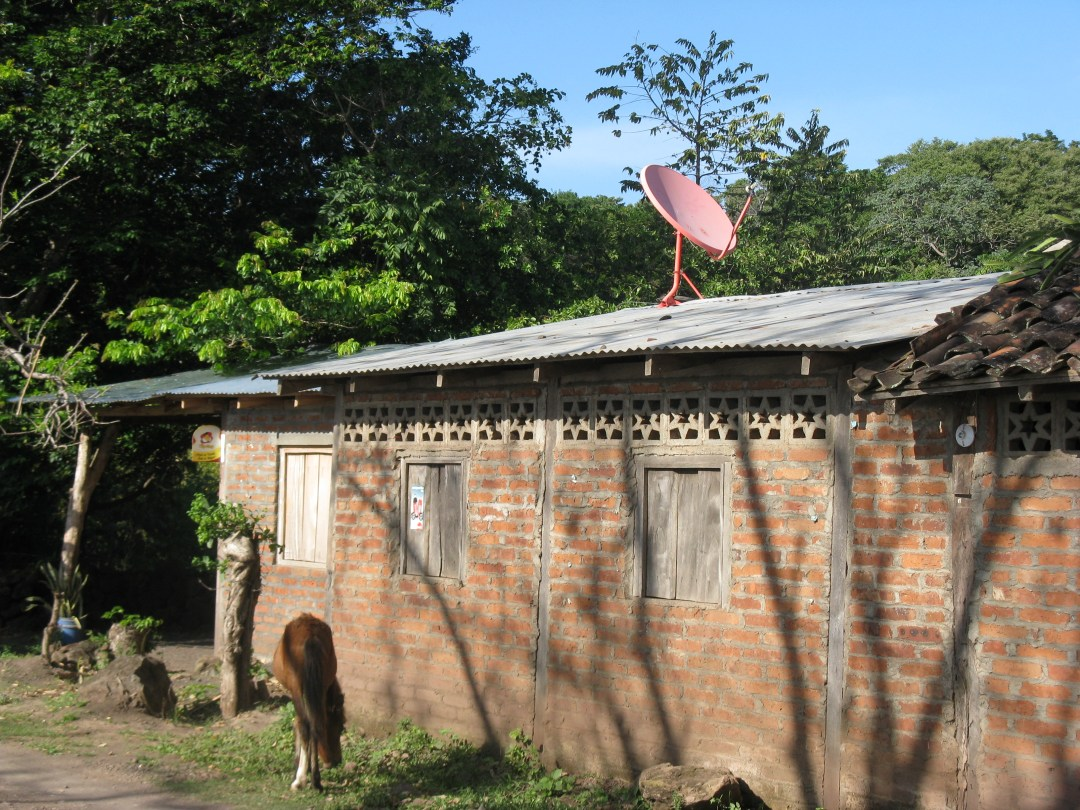 Our neighbour's house (and satellite dish)