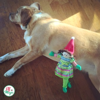 An Elf and the family dog