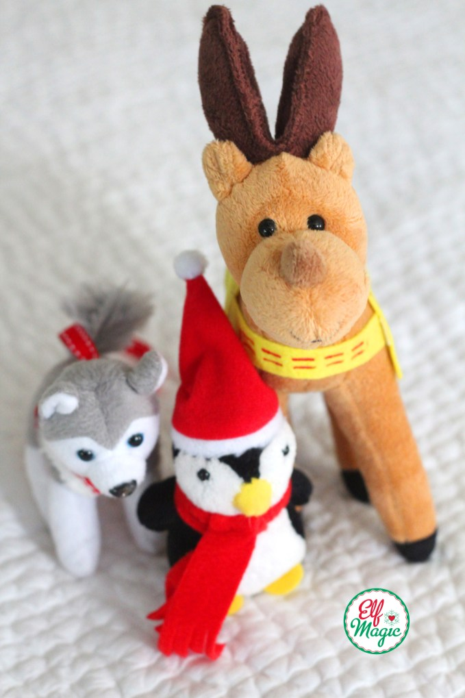 The elf pets pose for a photo