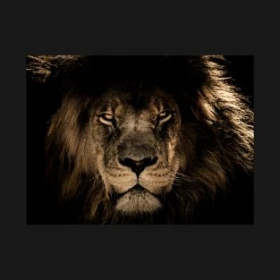 angry lion t shirts