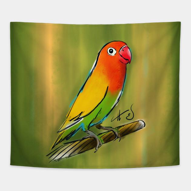fischer lovebird