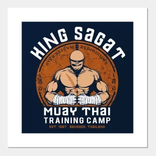 muay thai posters and art prints