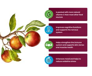Organic Camu Camu Benefits