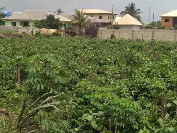1500sqm of land facing Lekki – Epe expressway at Abijo for sale