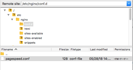 Configure GooglePage Speed with NGINX