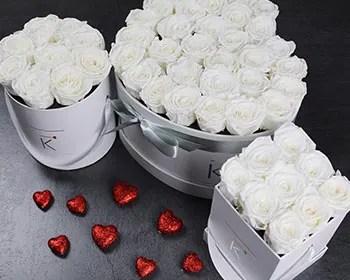 Weiße Rosenboxen