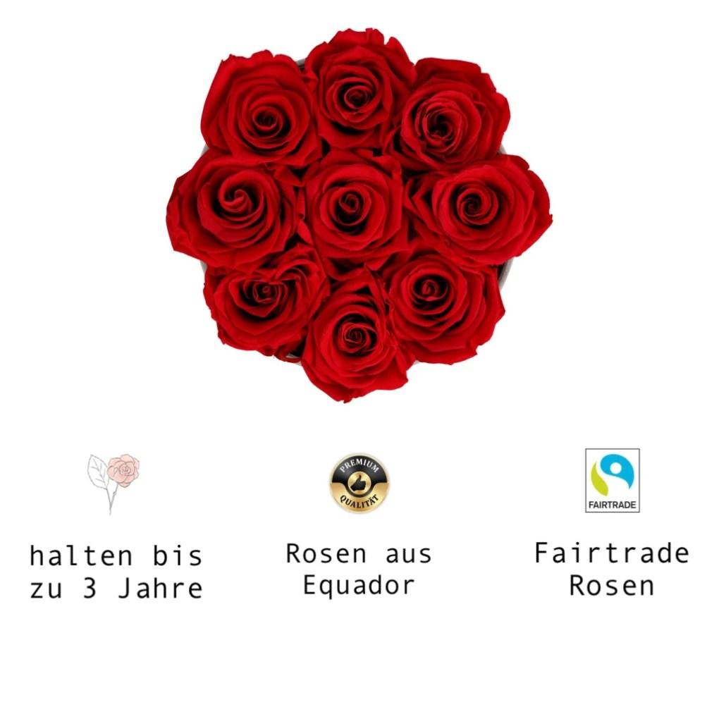 Infinity Rose Fairtrade