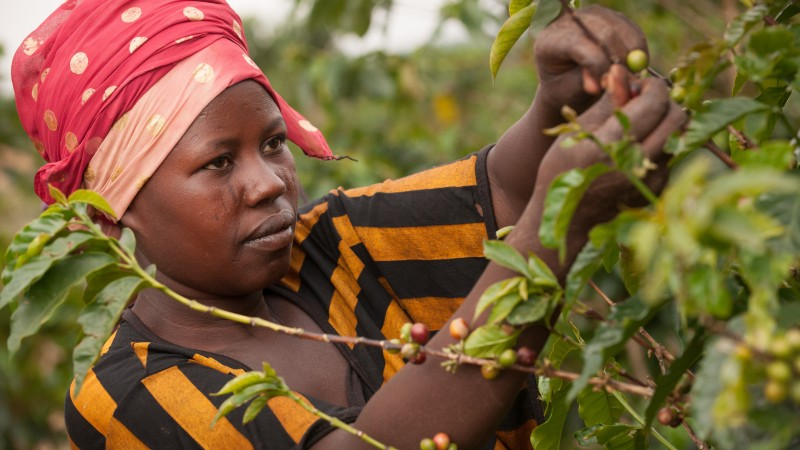 Women in Economic Development