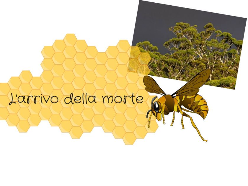 L_arrivo_della_mort