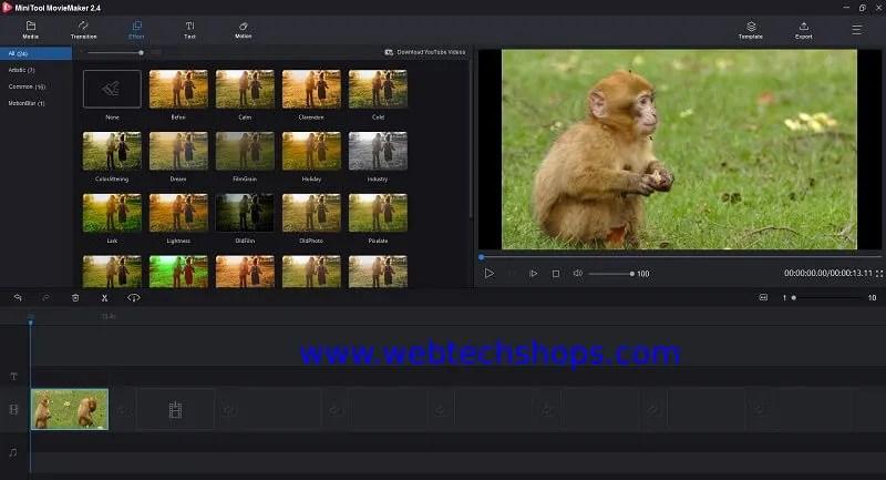 gif maker, gif to video maker
