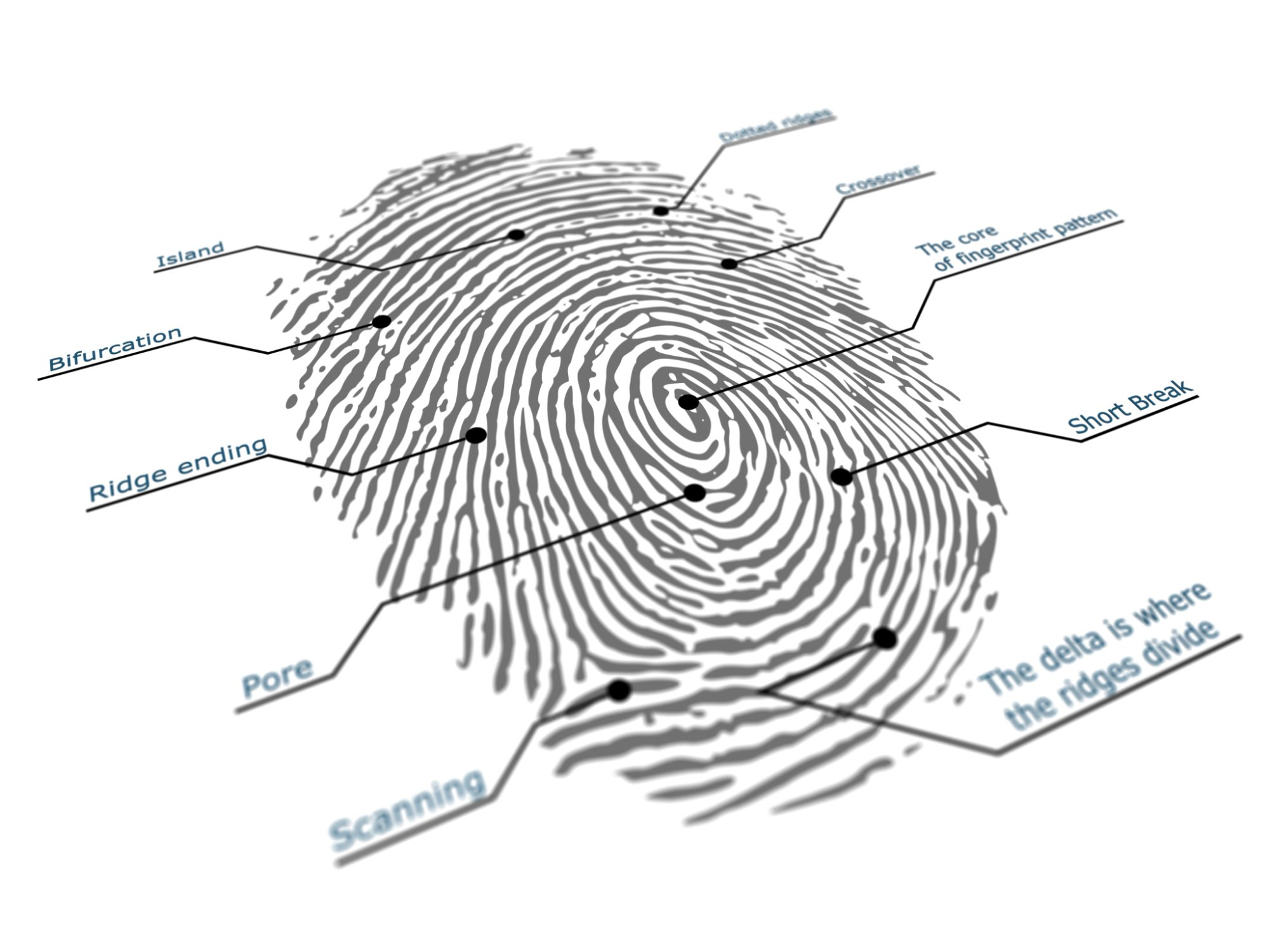 Is Your Fingerprint Your New Pin Code