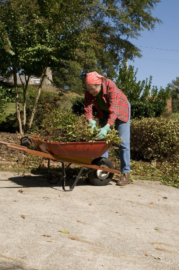 Gardening Free Stock Woman Outdoors