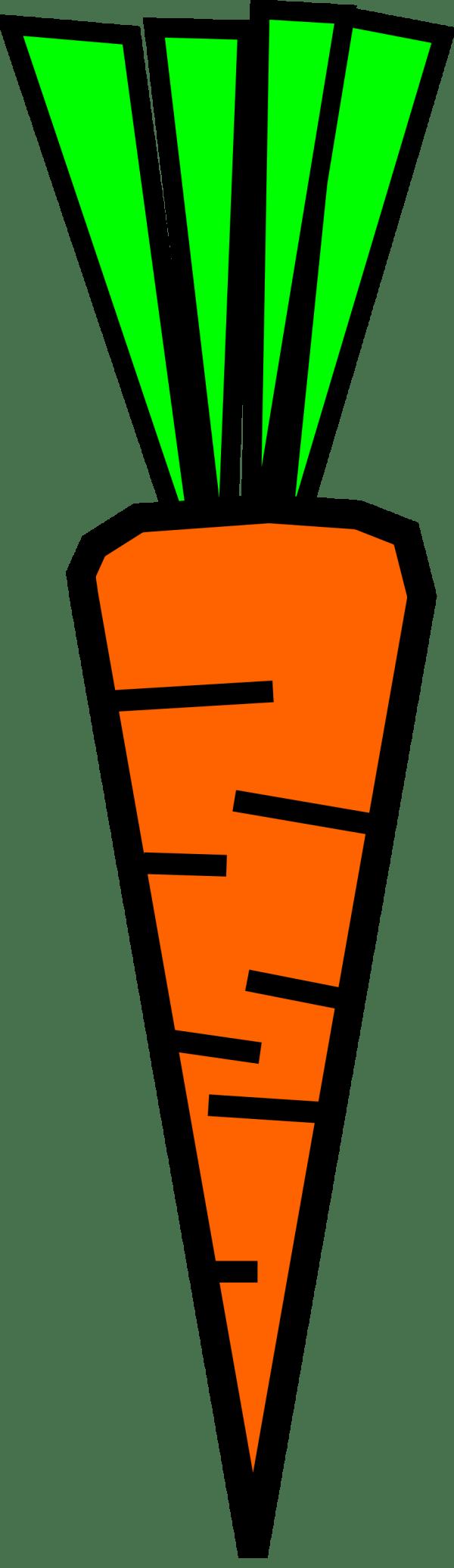 carrot free stock illustration