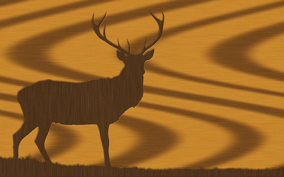 Deer Free Stock Photo An Oak Wood Texture With A Buck