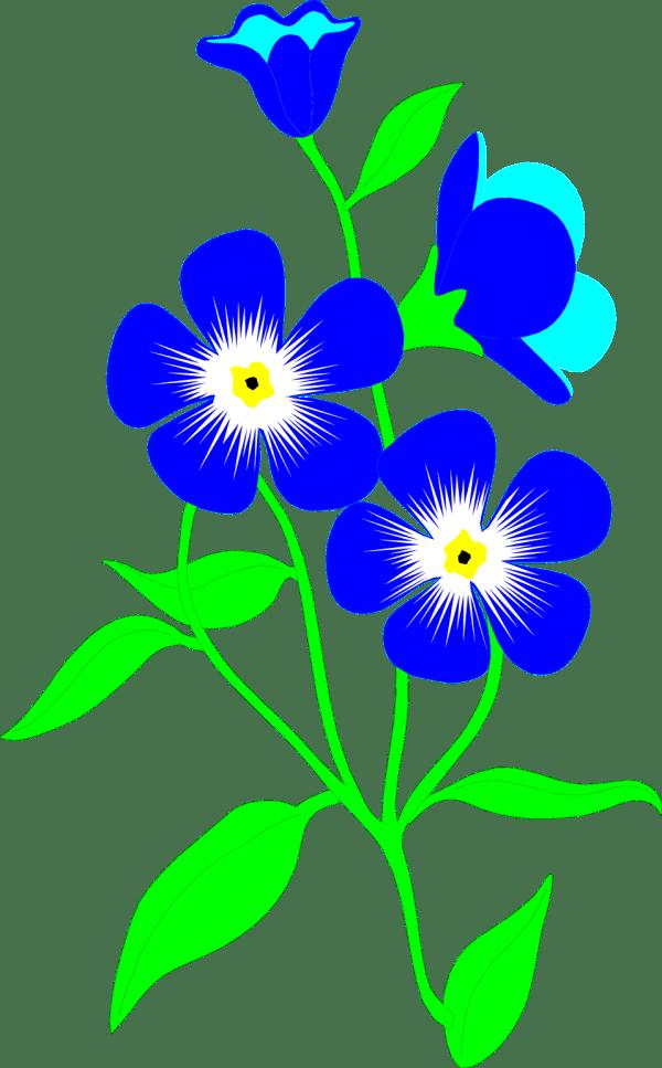 flowers blue free stock