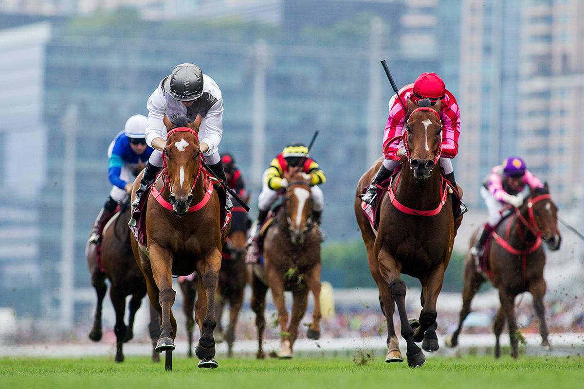 2018主席短途獎圖輯 – 賽馬新聞 – 香港賽馬會