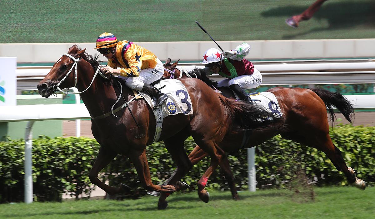 沙田銀瓶潘頓夥拍「勝得威」大熱掄元 – 賽馬新聞 – 香港賽馬會
