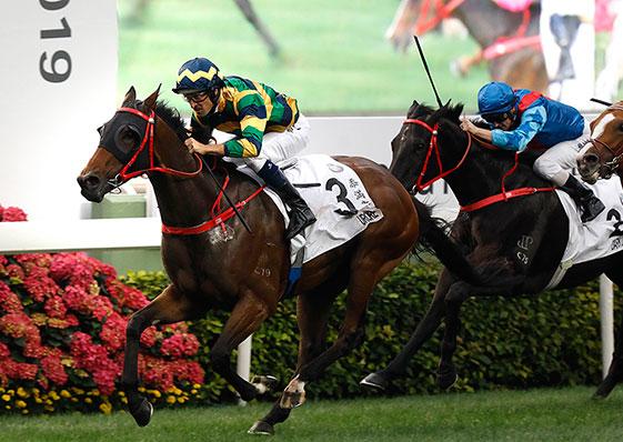賽馬新聞 – 香港賽馬會