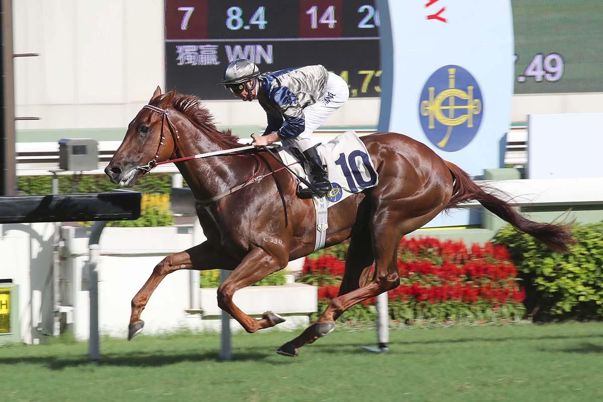 約翰摩亞滿意「忠心勇士」與「美麗傳承」雙雙抽得第五檔 – 賽馬新聞 – 香港賽馬會