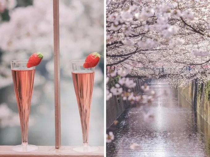 sông meguro là địa điểm ngắm hoa anh đào tại tokyo