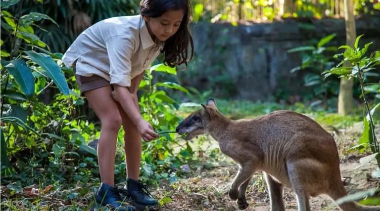 Những hoạt động thú vị tại Bali thích hợp cho gia đình có trẻ nhỏ!!!  nhung hoat dong thu vi tai bali thich hop cho gia dinh co tre nho16