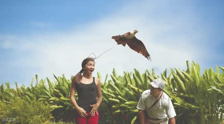 Những hoạt động thú vị tại Bali thích hợp cho gia đình có trẻ nhỏ!!!  nhung hoat dong thu vi tai bali thich hop cho gia dinh co tre nho18