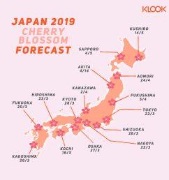 japan cherry blossom forecast 2019 [ 7051 x 7051 Pixel ]