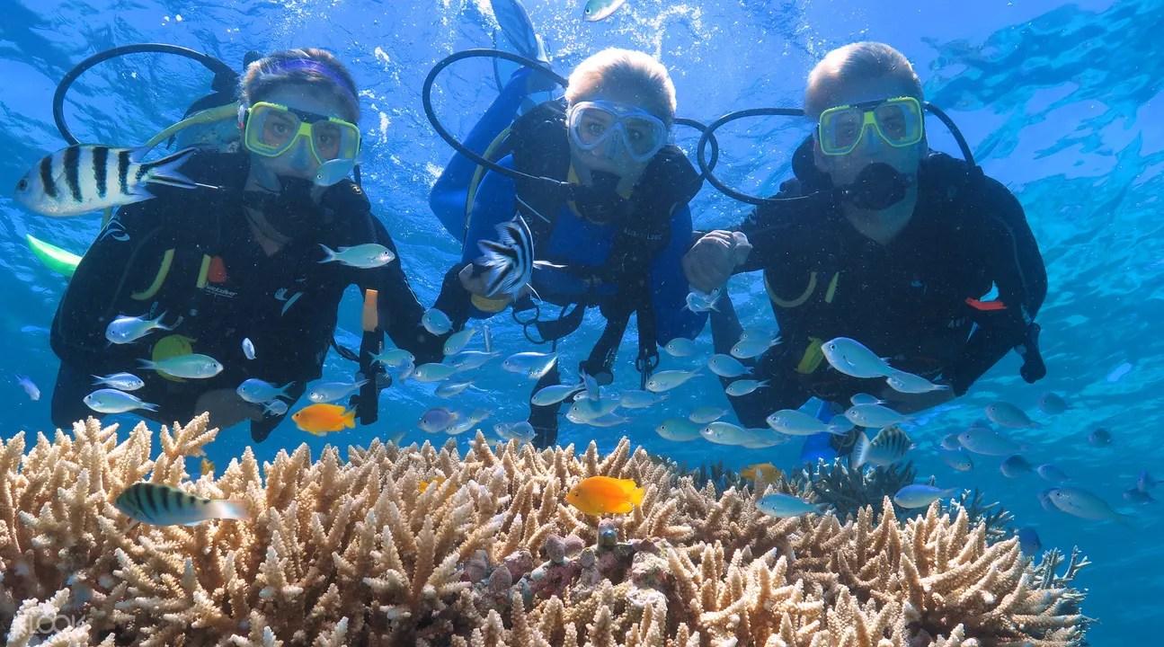 Outer Barrier Reef Dari Port Douglas Klook