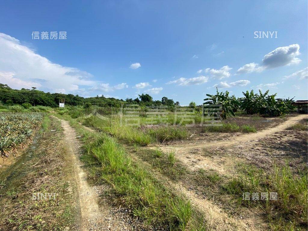 臺南市關廟區關廟美農地B,總價75萬,立即了解更多資訊