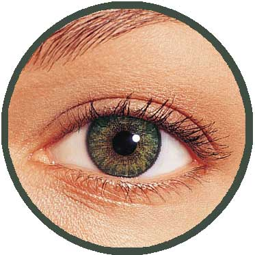 Freshlook Colourblends Coloured Contact Lenses Direct From