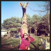 They have giraffes too!