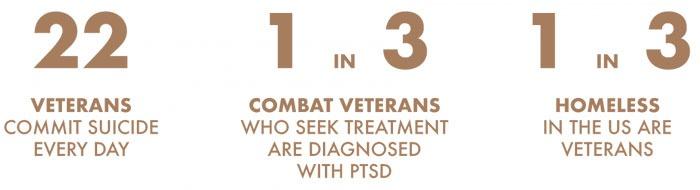 Veterans Statistics