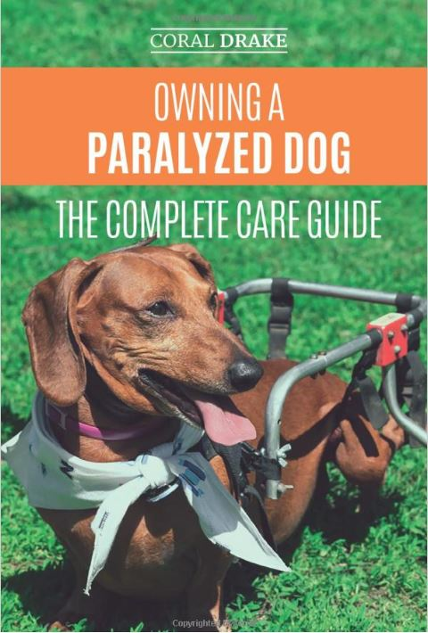 I was lucky enough to have the opportunity to write a book about my experience caring for a paralyzed dog
