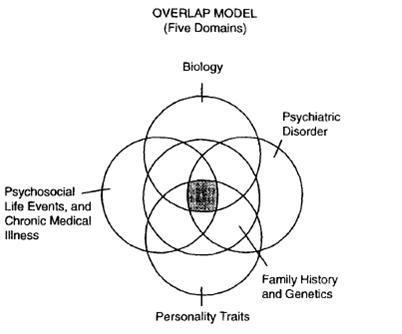 Suicide-Figure3 ⋆ Research Paper