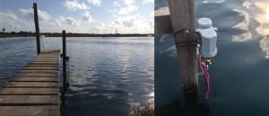 prototype water quality sensors