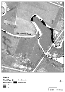 Black and white remote sensing image of a creek with willows mapped