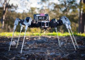 Syropods: CSIRO's hexapod robots - Robotics and Autonomous