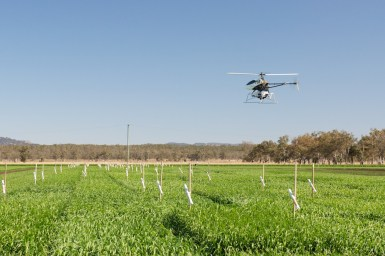 Drone scanning crops