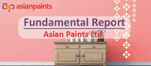 Fundamental Report