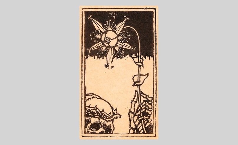 Featured image: Akseli Gallen-Kallela, Death and the Flower, woodcut, 9.5cm x 5.5cm Antell Collections, Finnish National Gallery / Sinebrychoff Art Museum Photo: Finnish National Gallery / Yehia Eweis