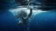 A Twinkle-Toed Elephant Case Study