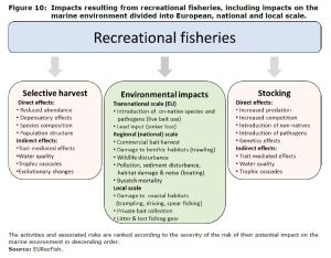 Figure 10: Impacts resulting from recreational fisheries, including impacts on the marine environment divided into European, national and local scale.