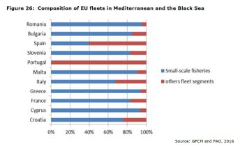 Figure 26: Composition of EU fleets in Mediterranean and the Black Sea